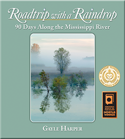 Roadtrip with a Raindrop - Harper thumb